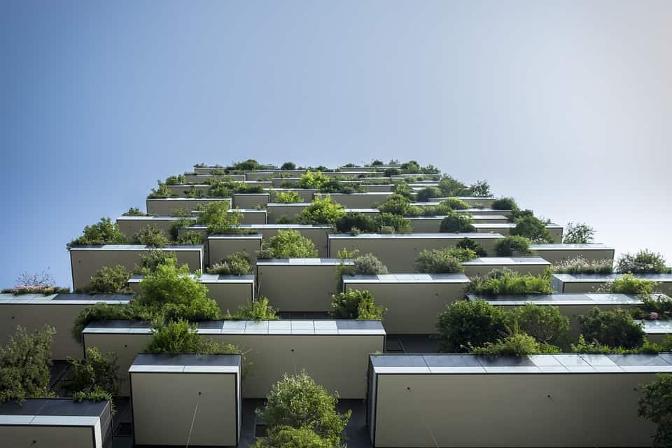 Green Building: Everything You Should Know
