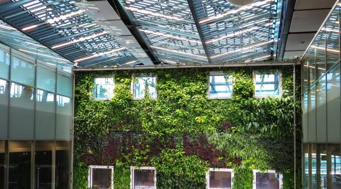 Tips For Greening Your Home And  Workplace