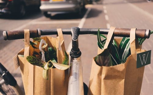 Recycle Grocery Bags