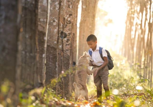 Go Green Save Life: 7 Tips To Follow At School