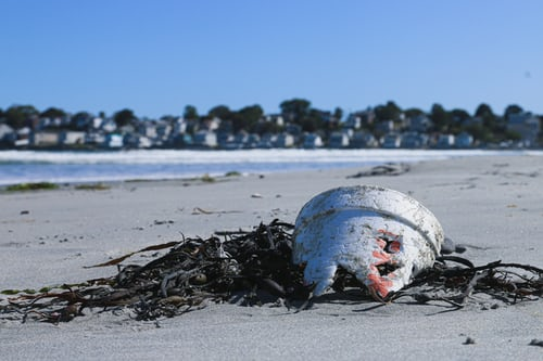 A Guide To Plastics In The Ocean