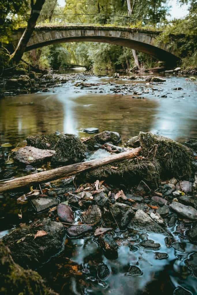 Figure Out The Effects Of Water Pollution On Our Planet